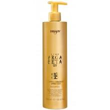 DIKSON ARGABETA UP LUXE Capelli Colorati Shampoo - Шампунь для окрашенных волос с кератином 500мл