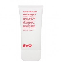 evo mane attention protein treatment - Укрепляющий протеиновый уход для волос 150мл