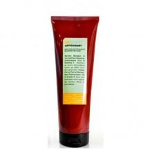 INSIGHT Antioxidant Rejuvenating Mask - Маска антиоксидант для перегруженных волос 250мл